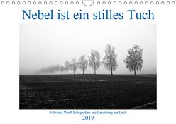 Nebel ist ein stilles Tuch – um Landsberg am Lech (Wandkalender 2019 DIN A4 quer) von Marten,  Martina