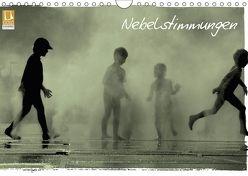 Nebelstimmung (Wandkalender 2018 DIN A4 quer) von Pohlmann,  Dietmar