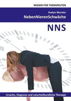 Nebennierenschwäche Wissen für Therapeuten von Wurster,  Evelyn