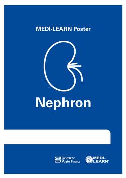 Nephron-Poster von Bormann,  Thomas, Kreissl,  Denise, Wesseler,  Dr. med. Claas