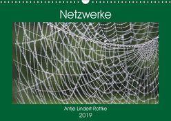 Netzwerke (Wandkalender 2019 DIN A3 quer) von Lindert-Rottke,  Antje