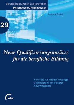 Neue Qualifizierungsansätze für die berufliche Bildung von Brutzer,  Alexandra