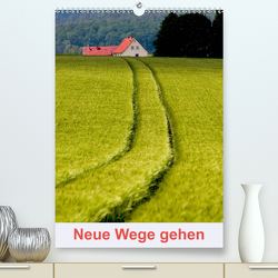 Neue Wege gehen (Premium, hochwertiger DIN A2 Wandkalender 2020, Kunstdruck in Hochglanz) von Pfleger,  Hans