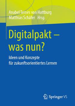 Digitalpakt – was nun? von Schaefer,  Matthias, Ternès,  Anabel