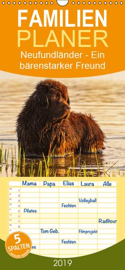 Neufundländer – Ein bärenstarker Freund – Familienplaner hoch (Wandkalender 2019 , 21 cm x 45 cm, hoch) von Starick,  Sigrid