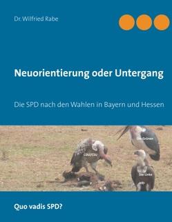 Neuorientierung oder Untergang von Rabe,  Dr. Wilfried