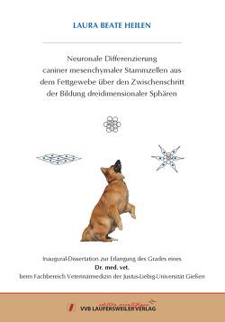 Neuronale Differenzierung caniner mesenchymaler Stammzellen aus dem Fettgewebe über den Zwischenschritt der Bildung dreidimensionaler Sphären von Heilen,  Laura Beate
