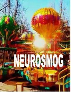 Neurosmog von De Toys,  Tom, G&GN Institut