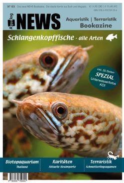 NEWS Bookazine von Schäfer,  Frank