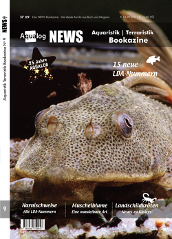 NEWS Bookazine Nr. 9 (Herbst 2020) von Schäfer,  Frank