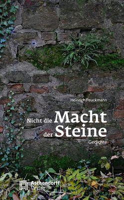 Nicht die Macht der Steine von Peuckmann,  Heinrich