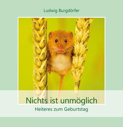 Nichts ist unmöglich von Burgdörfer,  Ludwig