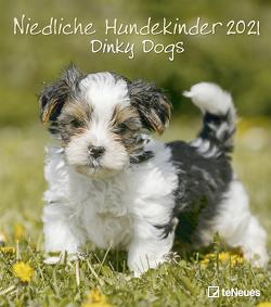 Niedliche Hundekinder 2021 – Wand-Kalender – Tier-Kalender – 30×34