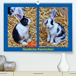 Niedliche Kaninchen (Premium, hochwertiger DIN A2 Wandkalender 2020, Kunstdruck in Hochglanz) von kattobello