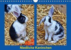 Niedliche Kaninchen (Wandkalender 2018 DIN A4 quer) von Kattobello,  k.A.