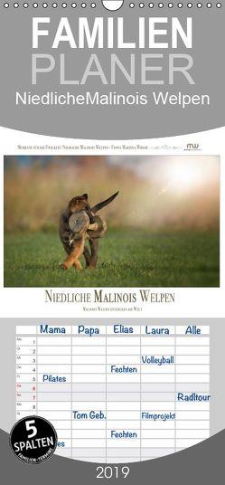 Niedliche Malinois Welpen – Familienplaner hoch (Wandkalender 2019 , 21 cm x 45 cm, hoch) von Wrede,  Martina