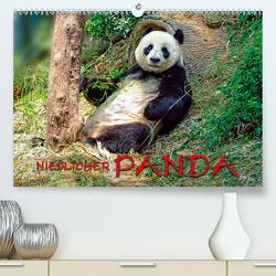 Niedlicher Panda (Premium, hochwertiger DIN A2 Wandkalender 2020, Kunstdruck in Hochglanz) von Roder,  Peter