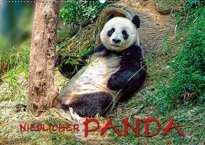 Niedlicher Panda (Wandkalender 2018 DIN A2 quer) von Roder,  Peter