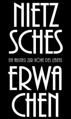 Nietzsches Erwachen von Herbst,  Daniel
