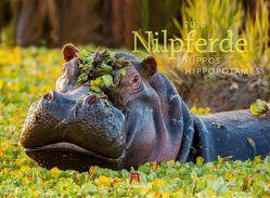 Nilpferde – Flusspferde 2020