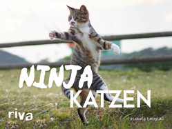 Ninjakatzen von hiroyuki,  hisakata
