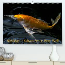 Nishikigoi – Koikarpfen in ihrer Welt (Premium, hochwertiger DIN A2 Wandkalender 2020, Kunstdruck in Hochglanz) von Renken,  Erwin