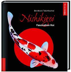Nishikigoi von Teichfischer,  Bernhard