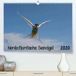 Nordatlantische Seevögel (Premium, hochwertiger DIN A2 Wandkalender 2020, Kunstdruck in Hochglanz) von Wolf,  Gerald
