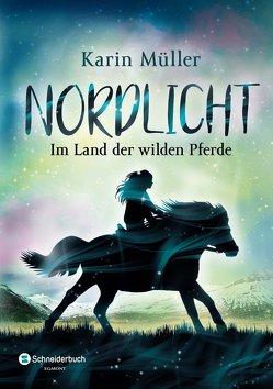 Nordlicht, Band 01 von Mueller,  Karin