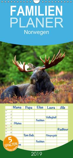 Norwegen – Familienplaner hoch (Wandkalender 2019 , 21 cm x 45 cm, hoch) von Stanzer,  Elisabeth
