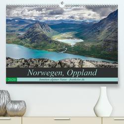 Norwegen, Oppland (Premium, hochwertiger DIN A2 Wandkalender 2020, Kunstdruck in Hochglanz) von Brehm (www.frankolor.de),  Frank