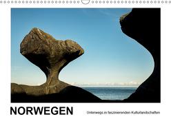 Norwegen – Unterwegs in faszinierenden Kulturlandschaften (Wandkalender 2019 DIN A3 quer) von Hallweger,  Christian