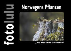 Norwegens Pflanzen von fotolulu