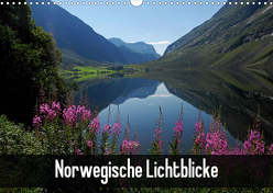 Norwegische Lichtblicke (Wandkalender 2020 DIN A3 quer) von Pons,  Andrea