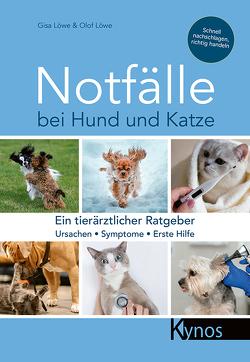 Notfälle bei Hund und Katze von Löwe,  Gisa & Olof