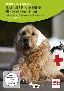 Notfall! Erste Hilfe für meinen Hund von Alef,  Ralf, Strodtbeck,  Sophie