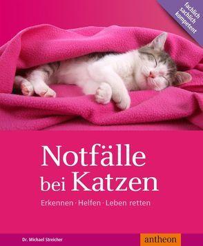 Notfälle bei Katzen von Streicher,  Michael