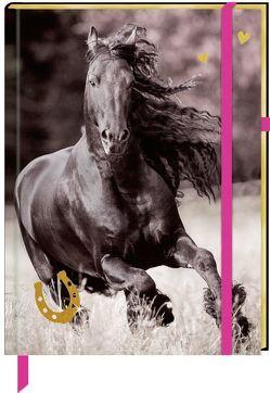 Notizbuch mit Stoffeinband – I LOVE HORSES – Meine Notizen von Slawik,  Christiane