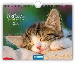 "Notizkalender ""Katzen"" 2020"