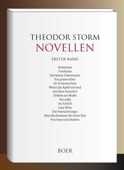 Novellen Band 1 von Storm,  Theodor