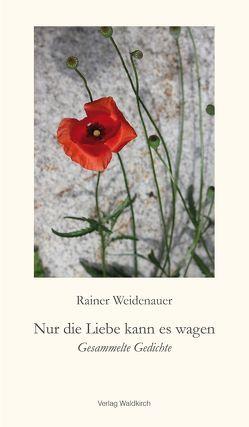Nur die Liebe kann es wagen von Kernbach,  Barbara, Luley,  Wolfgang, Michel,  Sascha, Weidenauer,  Rainer