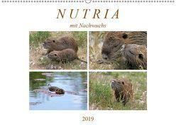 NUTRIA mit Nachwuchs (Wandkalender 2019 DIN A2 quer) von SchnelleWelten