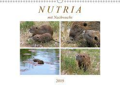 NUTRIA mit Nachwuchs (Wandkalender 2019 DIN A3 quer) von SchnelleWelten