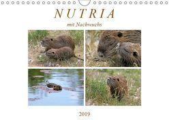 NUTRIA mit Nachwuchs (Wandkalender 2019 DIN A4 quer) von SchnelleWelten