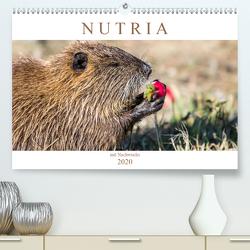 NUTRIA mit Nachwuchs (Premium, hochwertiger DIN A2 Wandkalender 2020, Kunstdruck in Hochglanz) von SchnelleWelten