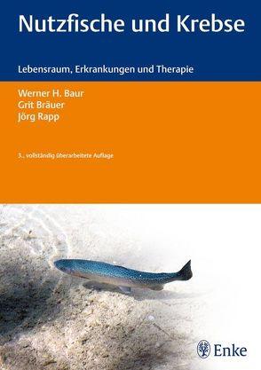 Nutzfische und Krebse von Baur,  Werner H., Bräuer,  Grit, Rapp,  Jörg