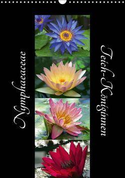 Nymphaeaceae – Teich-Königinnen (Wandkalender 2019 DIN A3 hoch) von Laimgruber,  Dagmar