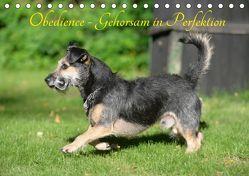 Obedience – Gehorsam in Perfektion (Tischkalender 2019 DIN A5 quer) von Spona,  Helma