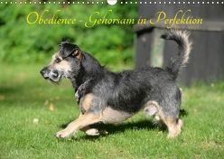 Obedience – Gehorsam in Perfektion (Wandkalender 2018 DIN A3 quer) von Spona,  Helma