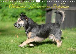 Obedience – Gehorsam in Perfektion (Wandkalender 2019 DIN A4 quer) von Spona,  Helma
